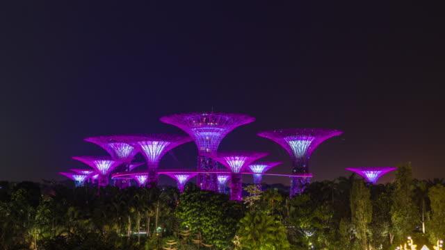 スーパーツリーグローブシンガポール、夜に照らされたスーパーツリー、タイムラプスビデオ ビデオ