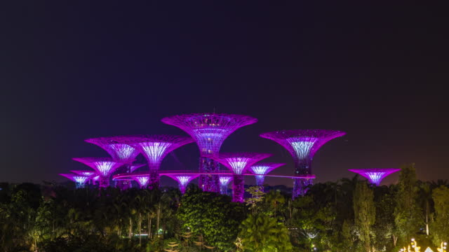 vídeos de stock e filmes b-roll de supertree grove singapore, supertrees illuminated at night, time lapse video - green city