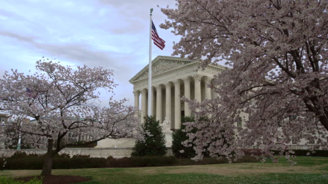 Supreme Court of the United States in the Springtime With Cherry Trees in Washington, DC