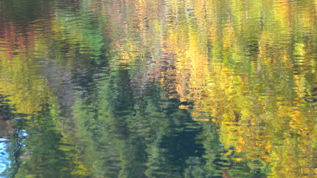 Surface of Autumn Lake.