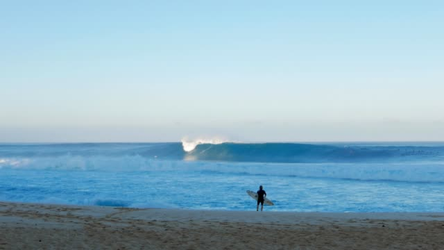 surfer at pipeline a surfer watches pipeline and waits before paddling out oahu stock videos & royalty-free footage