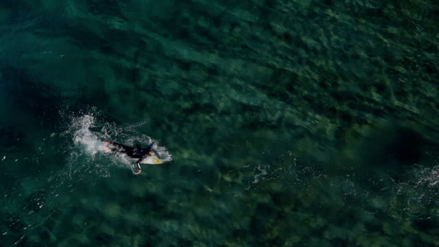 AERIAL: Surfer paddling for a wave video