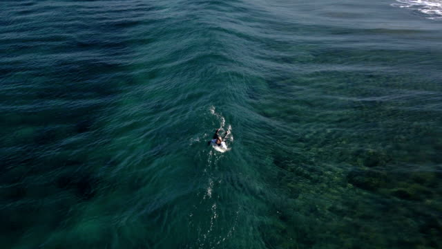 AERIAL: Surfer paddling in crystal clear water video