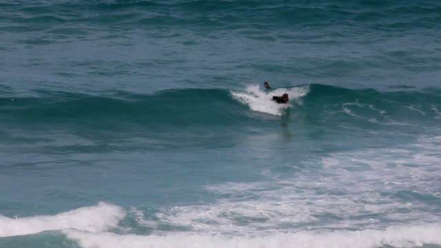 Surfer riding small waves in Scarborough, Cape Town, South Africa video