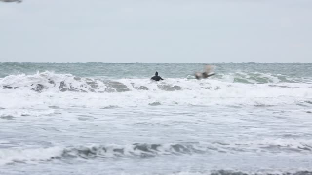 Surfer riding waves in cold weather video