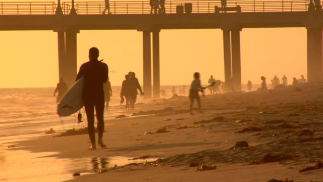 Surfer walks on beach - HD video