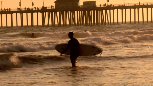 Surfer walks out - HD video