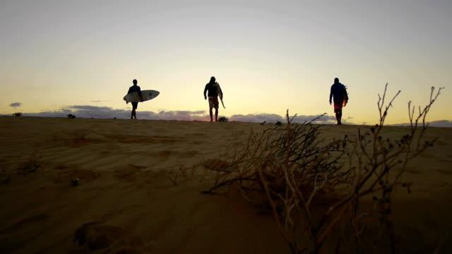AERIAL: Surfers at sunrise video