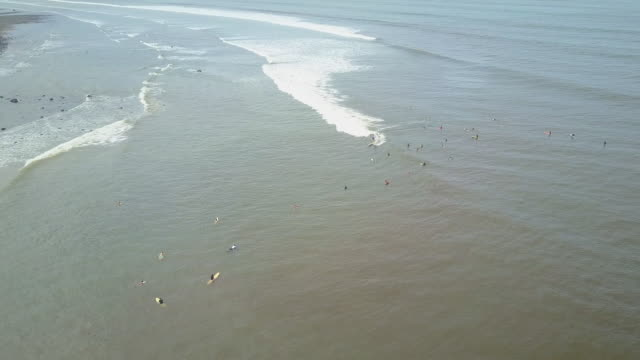AERIAL: Surfers floating on dirty water waiting for the waves at Bali surf spot video