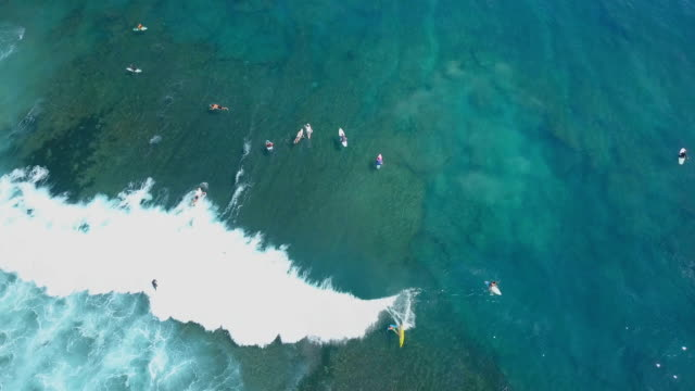 AERIAL TOP DOWN Surfers on summer vacation in Bali riding perfect breaking waves video