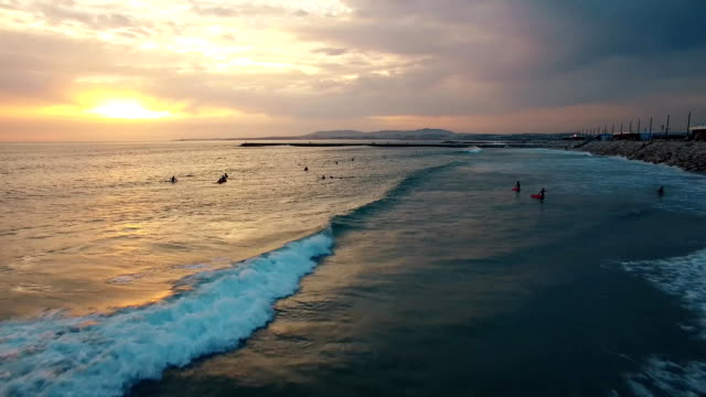 Surfers on the waves in the evening at sunset aerial view video