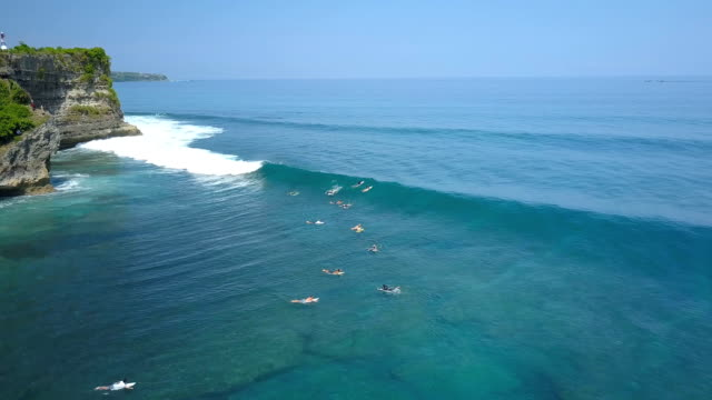 AERIAL: Surfers paddling, trying to catch a breaking wave in sunny Bali island video