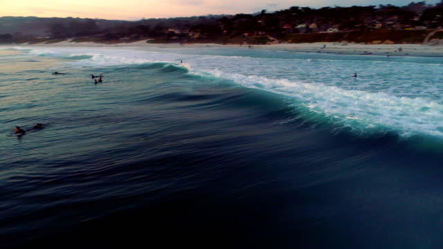 Surfer – Video