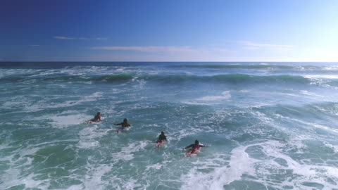 Surfing in the ocean Aerial view of four surfers on their surfboards in the sea in Australia. They are ready to surf. carefree stock videos & royalty-free footage