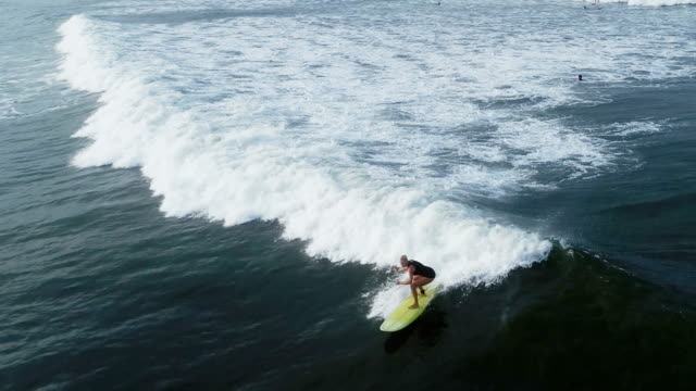 surfing: surfer woman riding on the blue waves slow motion - surf video stock e b–roll