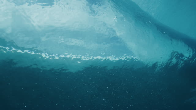 stockvideo's en b-roll-footage met surfen op de rit van je leven - ocean under water