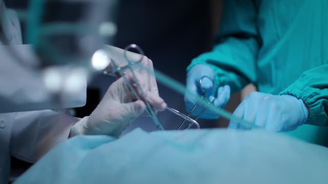 Surgeon hands take off blood tampon during medical operation. Health care