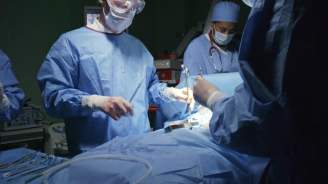 cerrahlar hasta dikiş - gazlı bez stok videoları ve detay görüntü çekimi