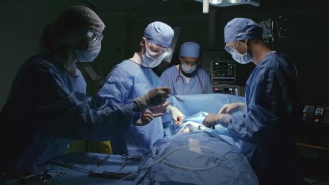 cerrahi prosedür - gazlı bez stok videoları ve detay görüntü çekimi