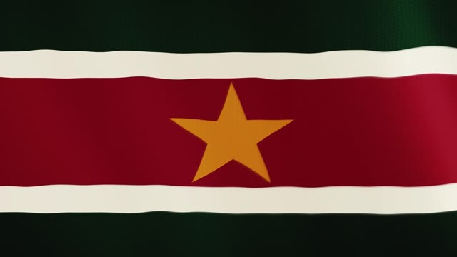 Suriname flag waving animation. Full Screen. Symbol of the country video