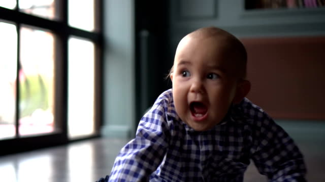 Surprised Little Baby on the Floor in Home Interior against big dog and mother background video
