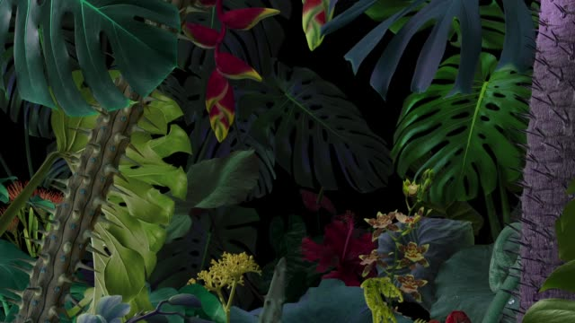 surreal animated night jungle background - gardino video stock e b–roll
