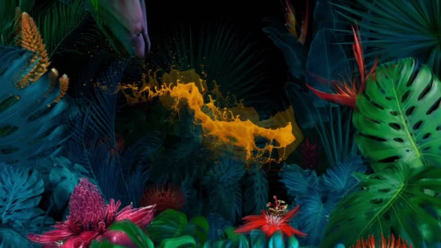 vídeos de stock e filmes b-roll de surreal jungle with splash of orange paint - trippy background