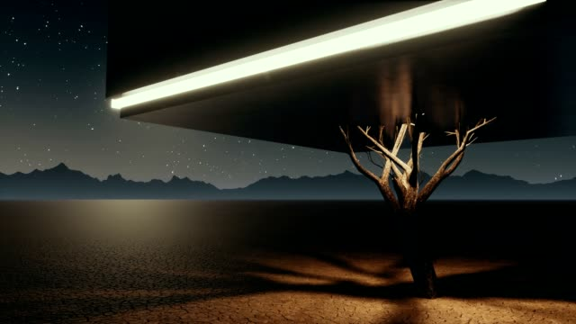 vídeos de stock e filmes b-roll de surreal lonely cube tree in apocalyptic desert at night - surrealismo