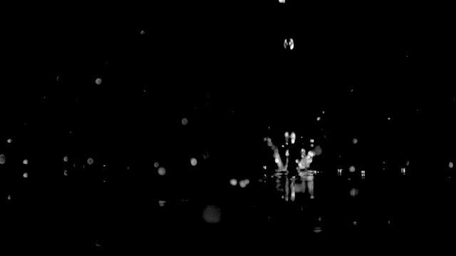一度に1滴の命を維持する - 水滴点の映像素材/bロール