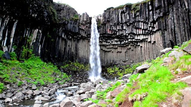 Svartifoss waterfall, Iceland video
