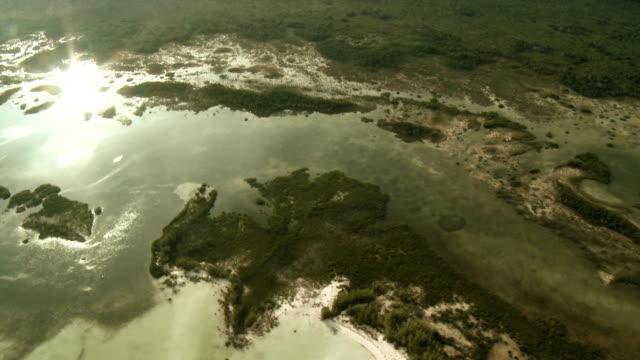 Swamp Aerial 2 video