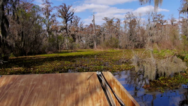 Swamp Airboat video