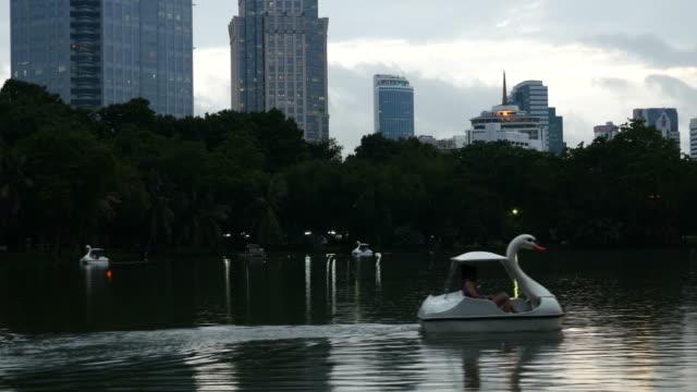swan tretboote in park und cityscape - schwan stock-videos und b-roll-filmmaterial