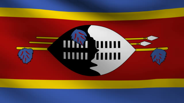 Swaziland flag. video