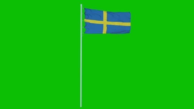 sverige flagga vinka på vind på grön skärm eller chroma nyckel bakgrund. 4k-animering - sweden map bildbanksvideor och videomaterial från bakom kulisserna