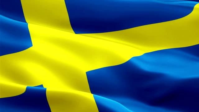 svenska flaggan närbild 1080p full hd 1920 x 1080 footage viftande video i vinden. nationella 3d svensk flagga vajande. tecken på sverige sömlös loop animation. svenska flaggan hd upplösning bakgrund 1080p - sweden bildbanksvideor och videomaterial från bakom kulisserna
