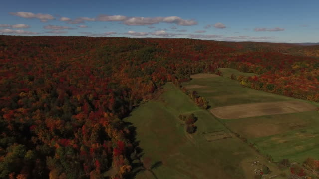 Sweeping View of New England Field in Fall video