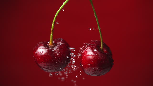 Sweet Cherries on Stems Splashing Water Drops in Slow Motion Macro shot of two fresh ripe cherries colliding with each other on the red background and splashing water drops around. Shot in 1000 FPS with High-Speed Camera, Phantom Flex 4K. cherry stock videos & royalty-free footage