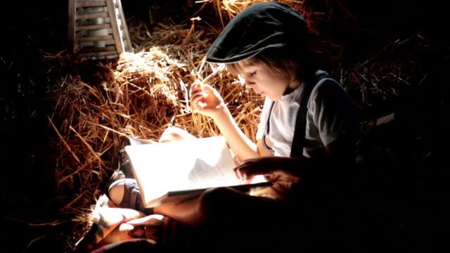 süßes kind, junge, ein buch auf dem dachboden auf einem haus sitzt auf einem heu, stroh, backen brötchen essen - dachboden stock-videos und b-roll-filmmaterial