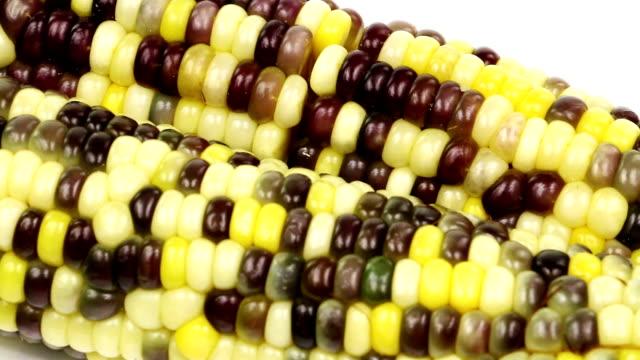 Sweet Corn video