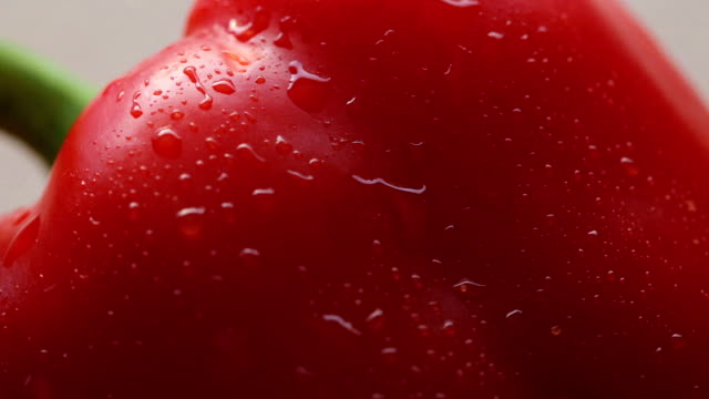 sweet red pepper with drops - paprica video stock e b–roll