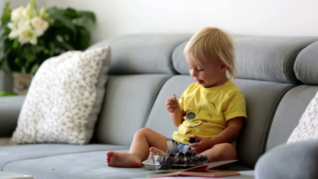 Sweet toddler boy, sitting on a couch, eating cherries and looking at picture book, enjoying healthy meal