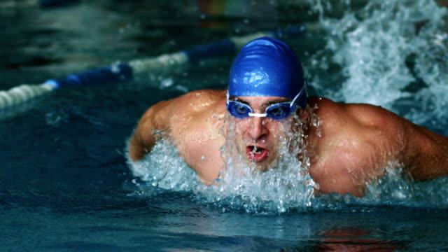 vídeos de stock e filmes b-roll de nadador fazendo o curso de borboleta - swim arms
