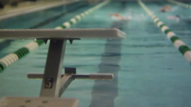 HD: Swimmer in lap lane video