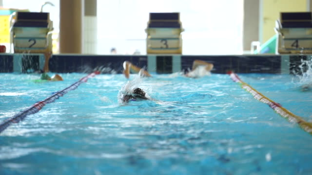 Swimmers doing laps in indoor pool Sports in the Ticino Region of Switzerland less than 10 seconds stock videos & royalty-free footage