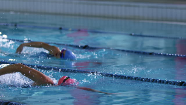 Swimmers training in a swimming pool