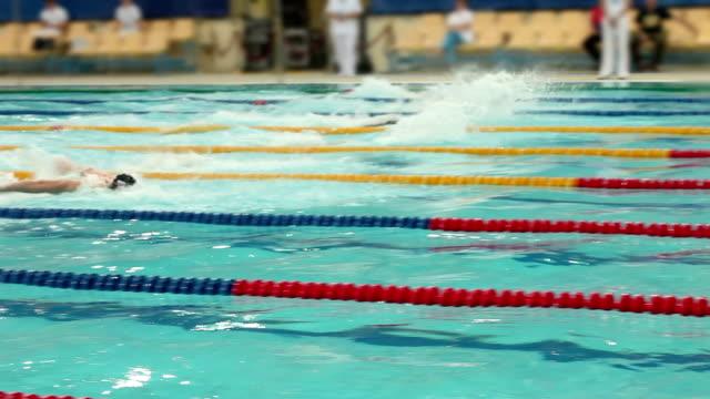 vídeos de stock e filmes b-roll de swimming competition style butterfly men, finish - swim arms
