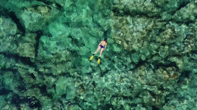 swimming in clear turquoise sea - mar mediterraneo video stock e b–roll
