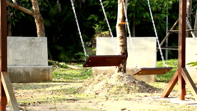 stockvideo's en b-roll-footage met swingen in de tuin - tarzan
