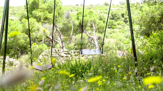 LS DS Swings Swinging In The Wind video